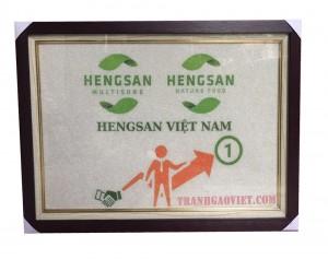 Tranh logo Hengsan Vietnam