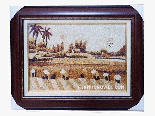 Tranh gạo phong cảnh làng quê| Tranh gạo mùa gặt